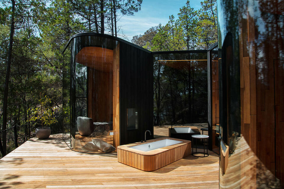 Forest view of the Coastal Pavilion at Freycinet Lodge