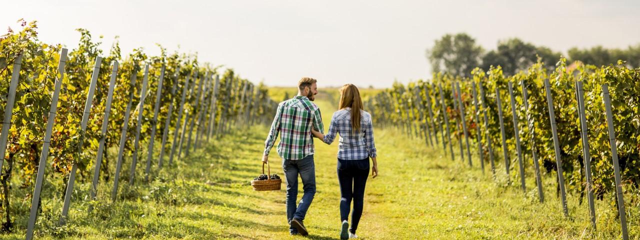 Couple à la campagne