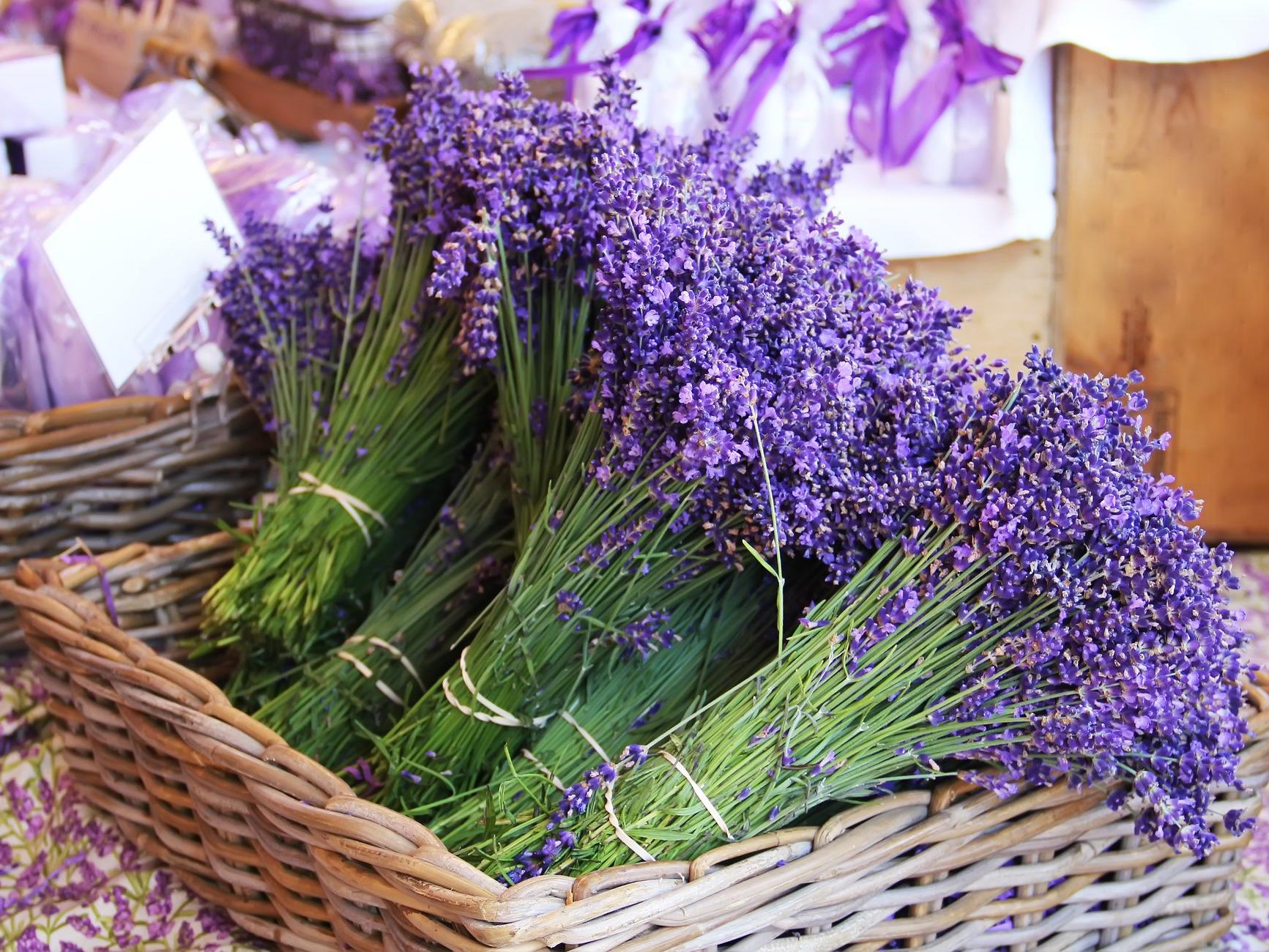Lavendar bunches in a straw bucket