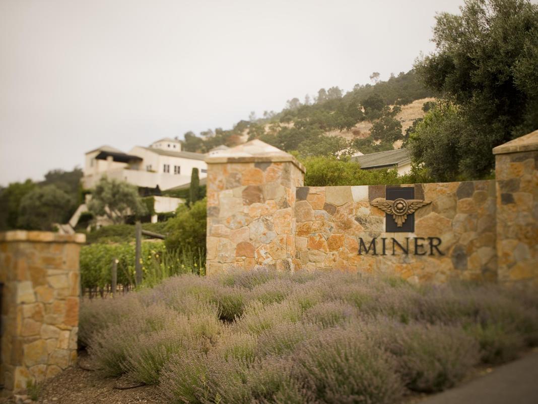 miner vineyards