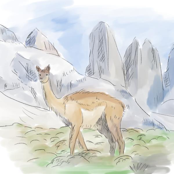 Dibujo De Llama