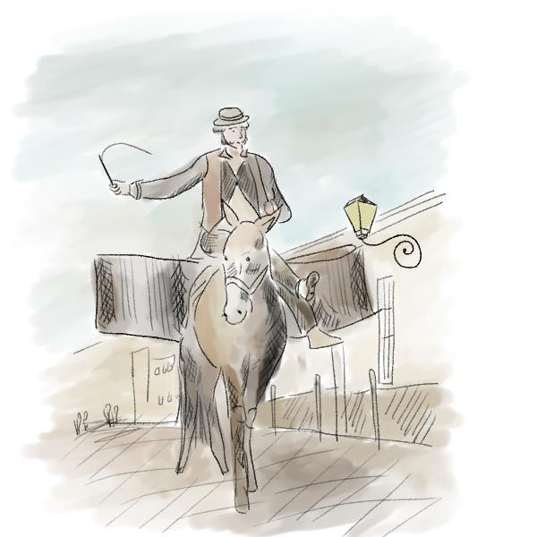Hombre, equitación, caballo