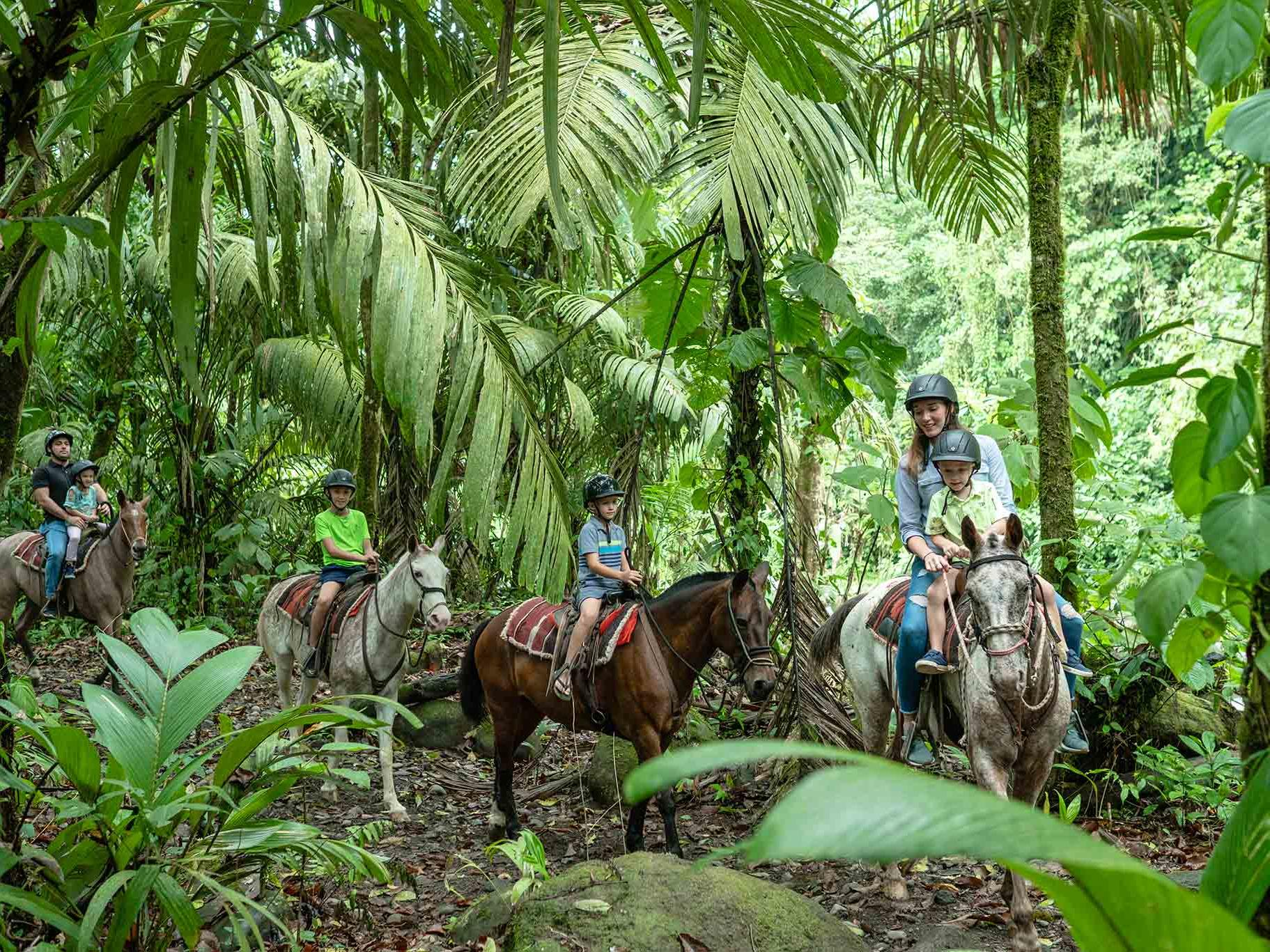 group of guests horseback riding in rainforest