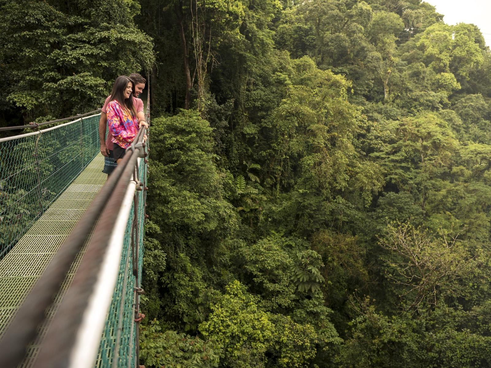Hanging Bridges