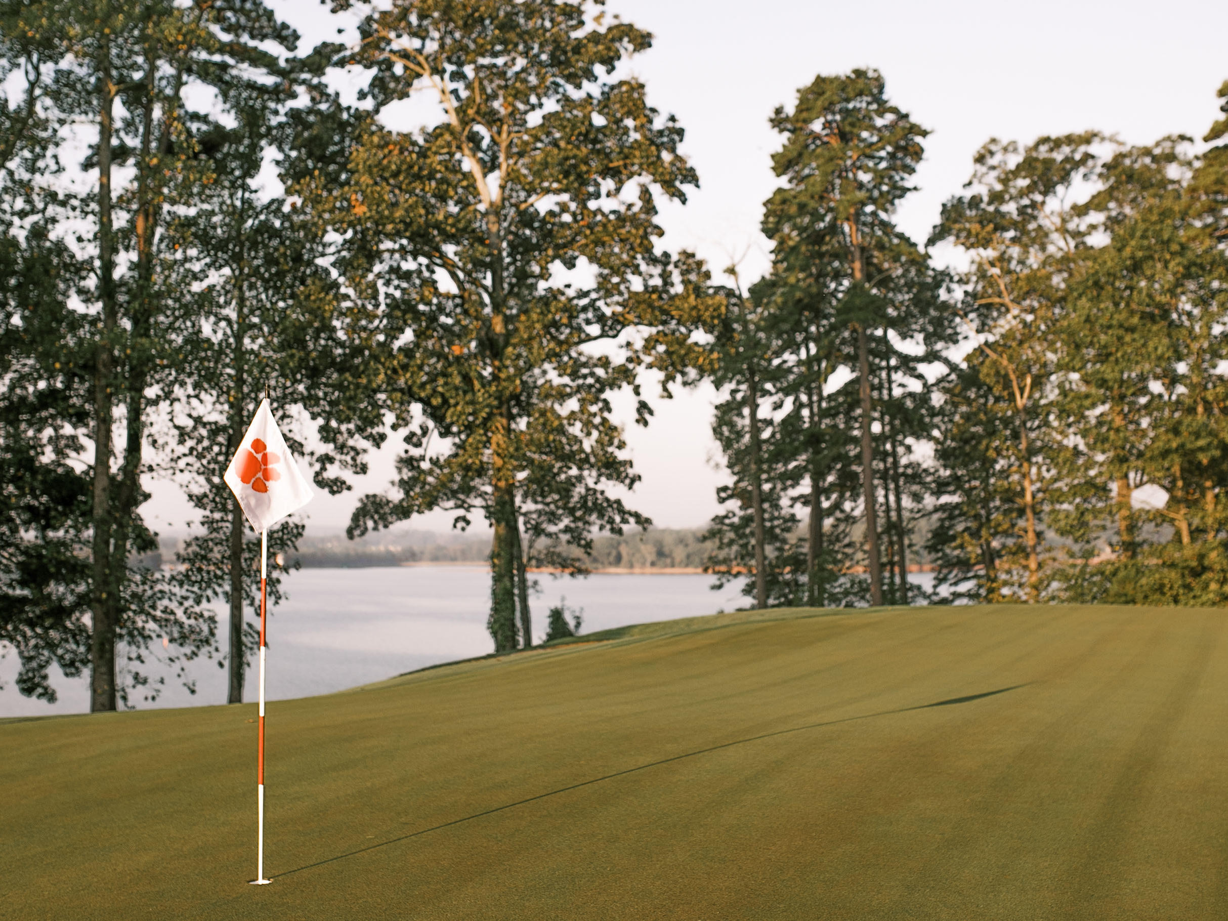 view of lake and trees with flagpole on golf course