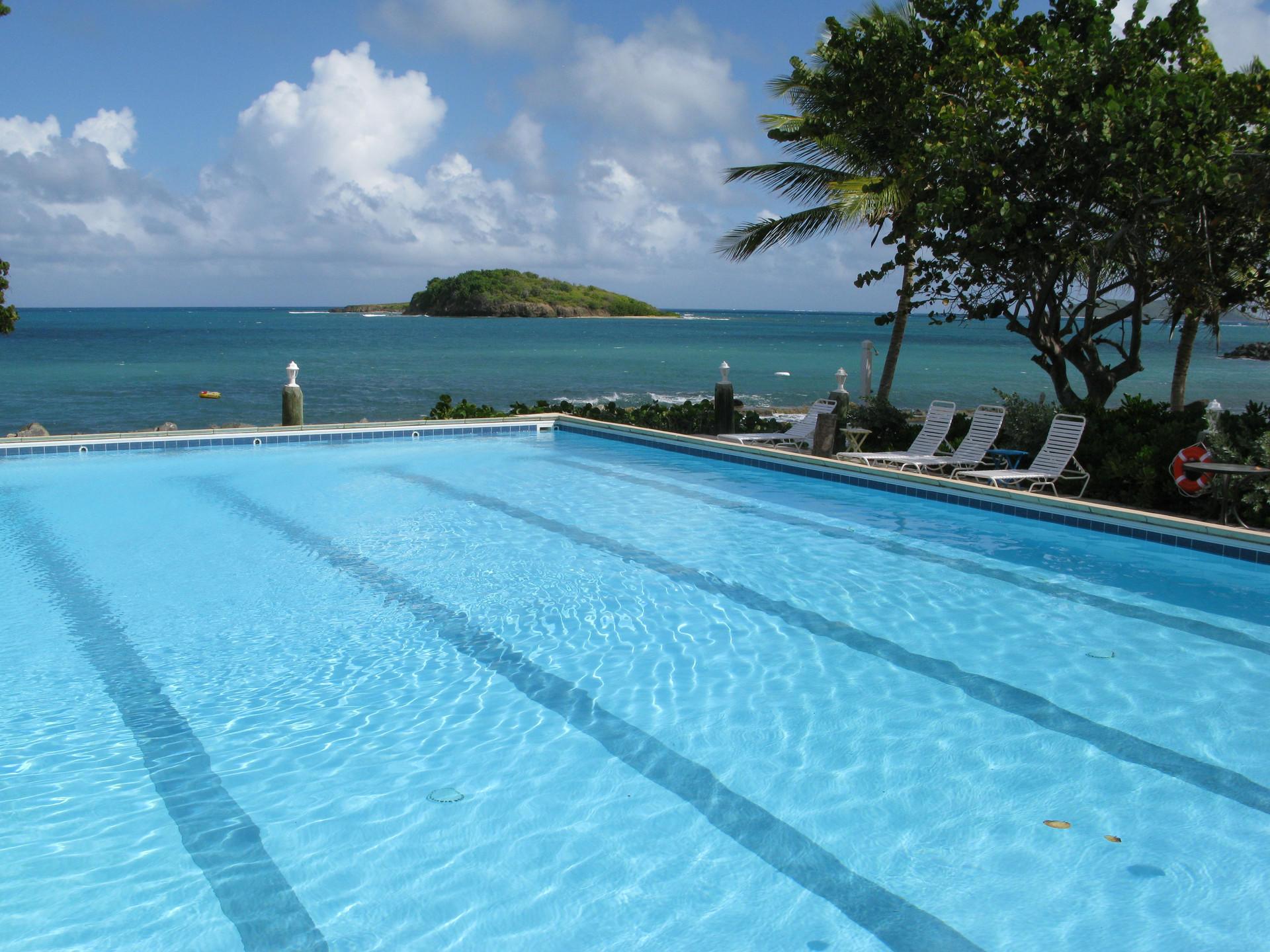 Pool with ocean view at Tamarind Reef Resort