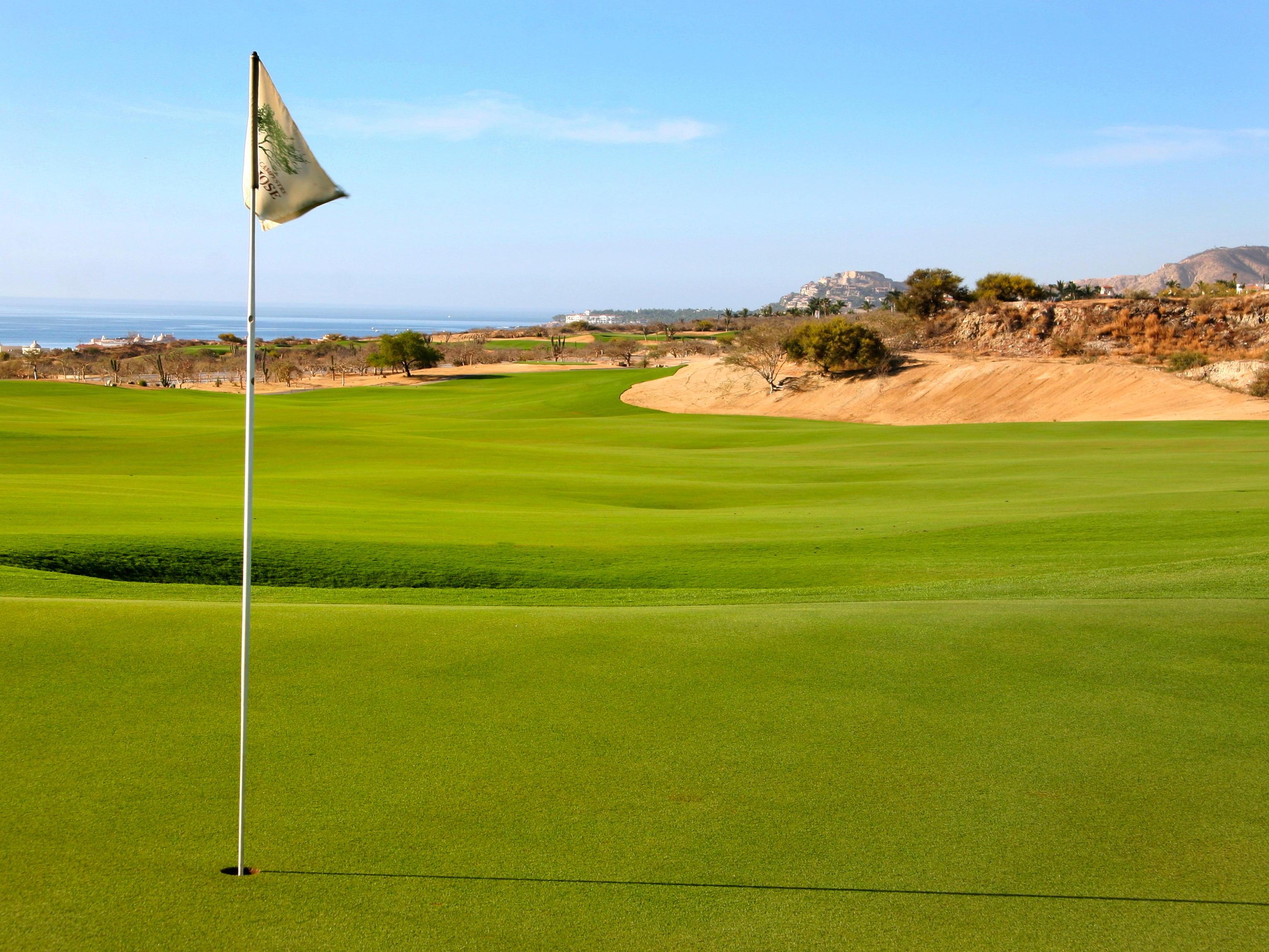 a flagpole on a golf course