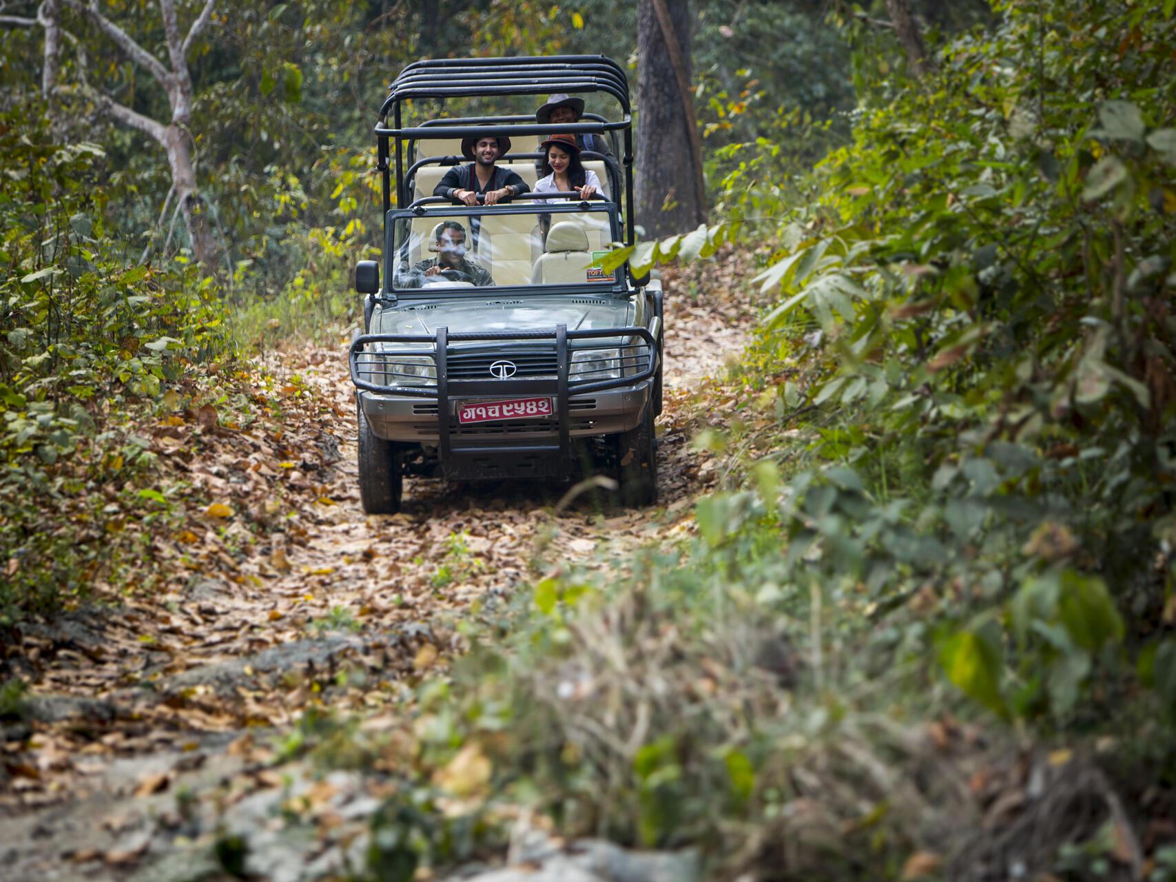 Safari gip going at forest  near Meghauli Serai