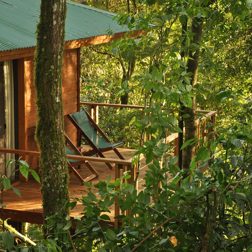 Mocona Virgin Lodge by DON