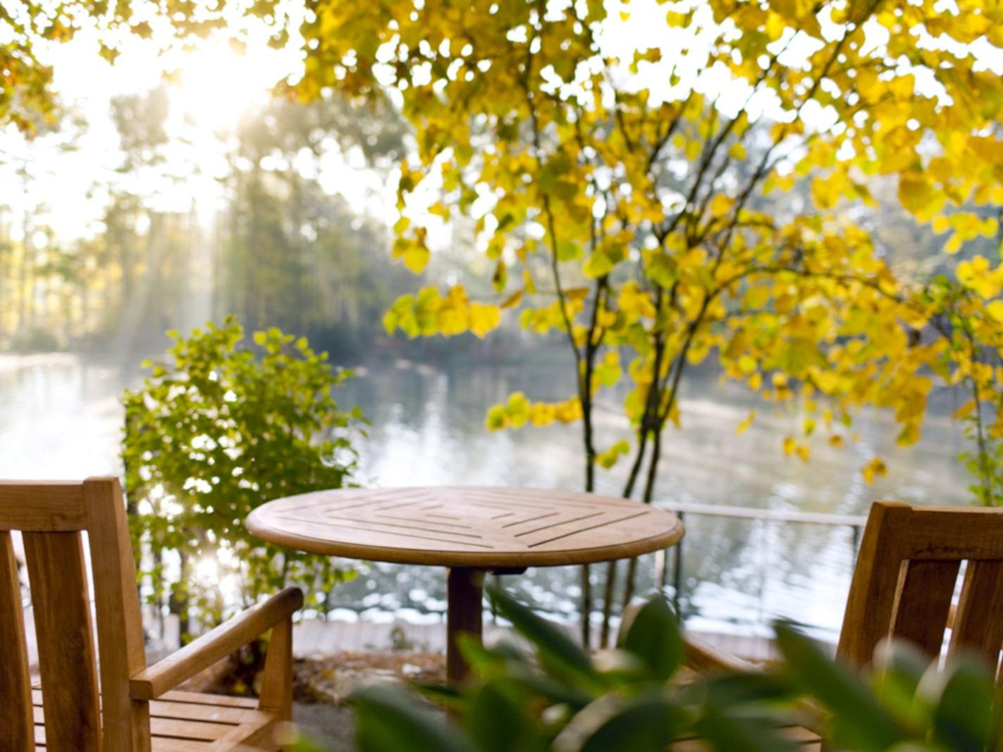 seats and table overlooking lake and tree with yellow leaves