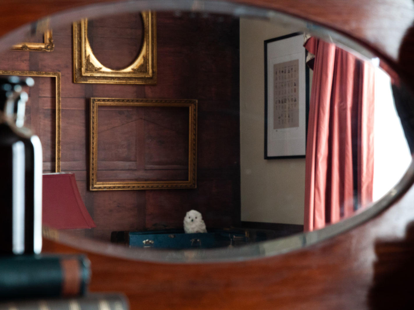 Wizards Suite Mirror Detail at The Hotel Windsor Melbourne