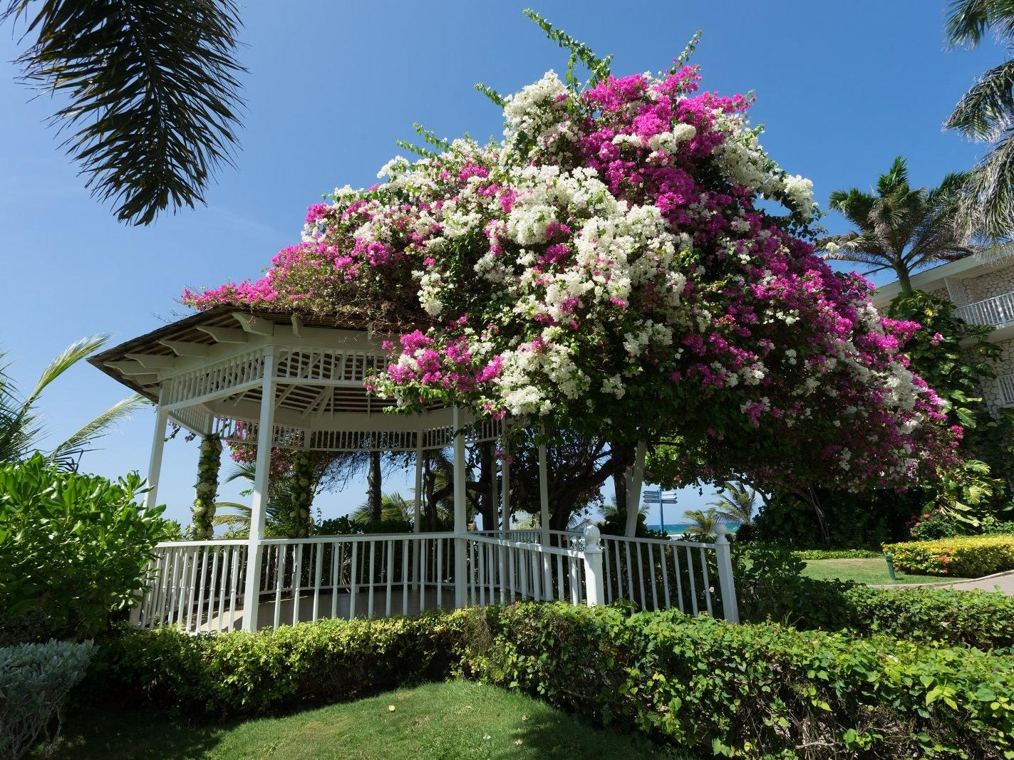 gazebo with bright florals