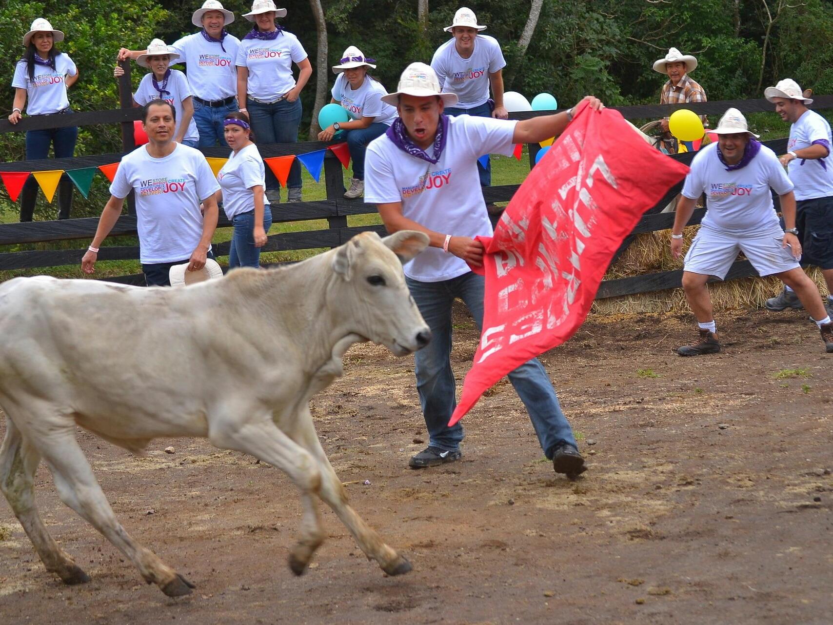 Bullfighting Activity at Buena Vista Del Rincon