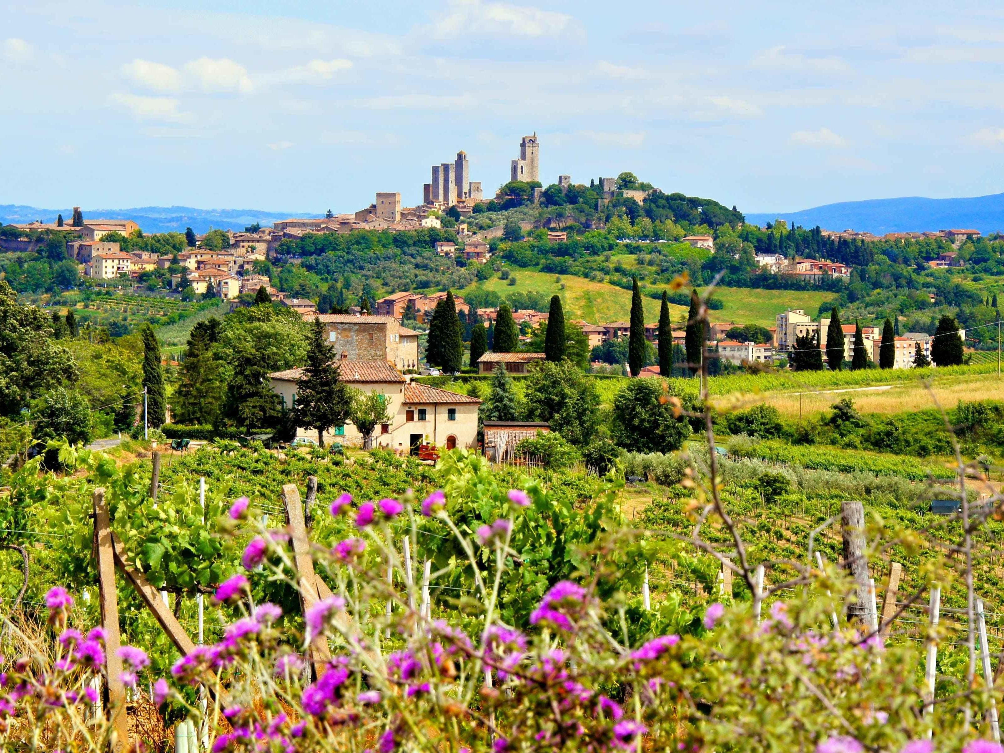 Toscana fioritura