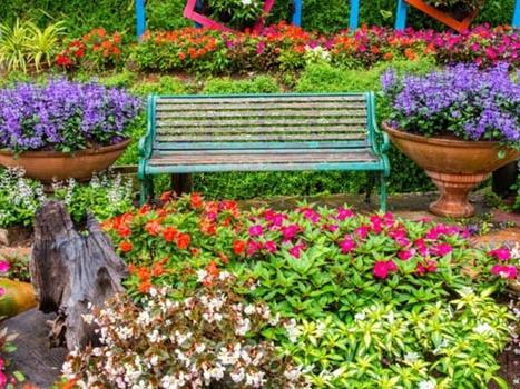 Disney's EPCOT is Gearing Up for its Annual Flower & Garden Festival