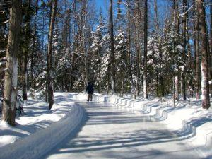 Clear ice skating path in Forrest