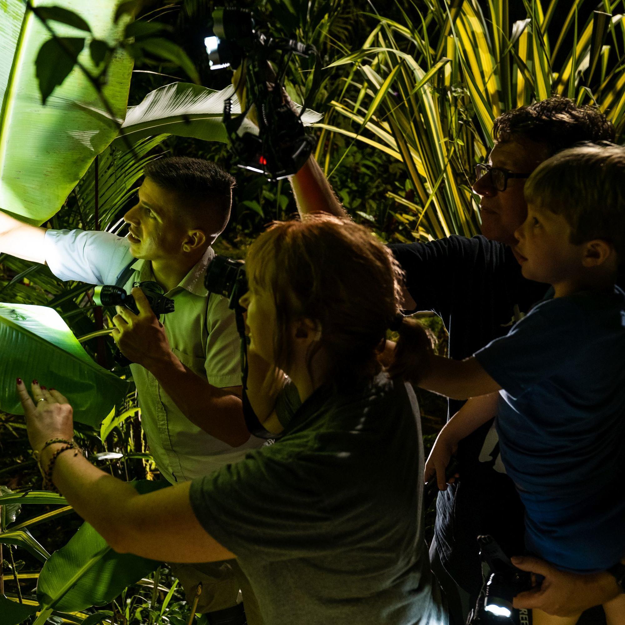 Equipo de filmación en el bosque