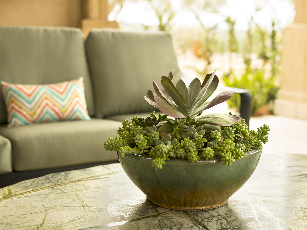 Seating area and table with succulent plant