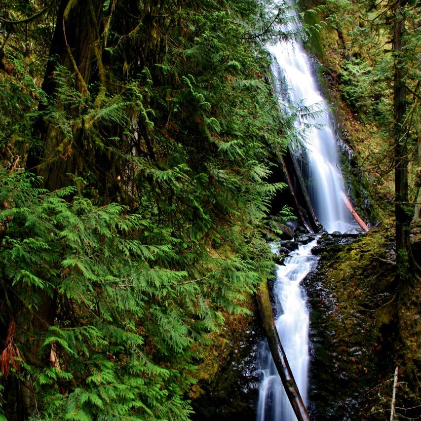 Olympic National Park waterfall next to Alderbrook Resort