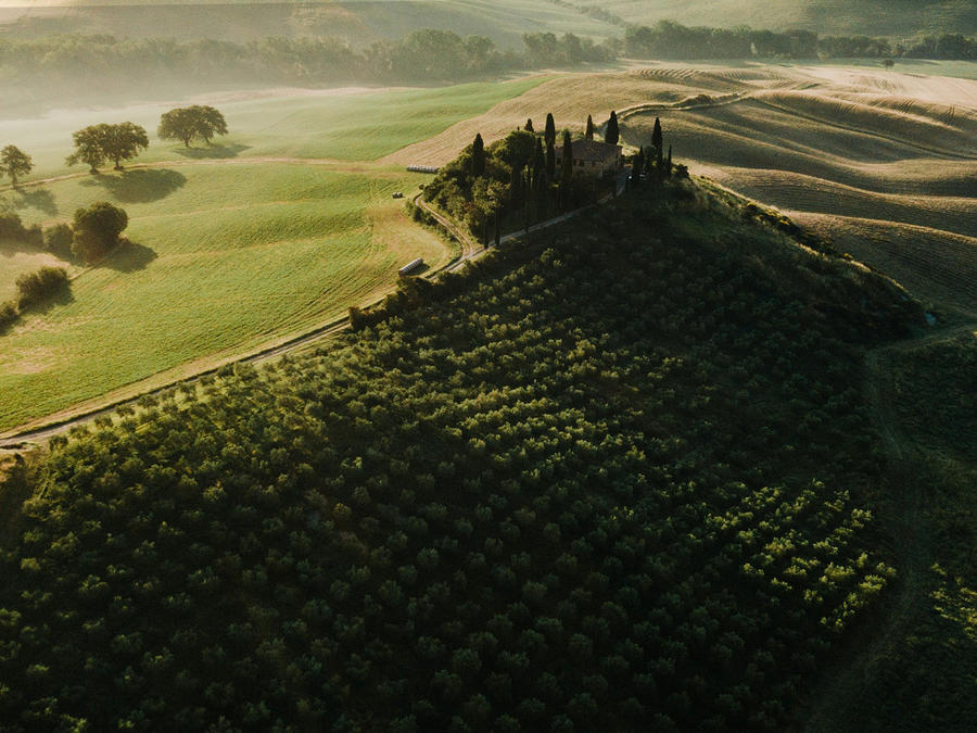 Tuscany's Finest Wines
