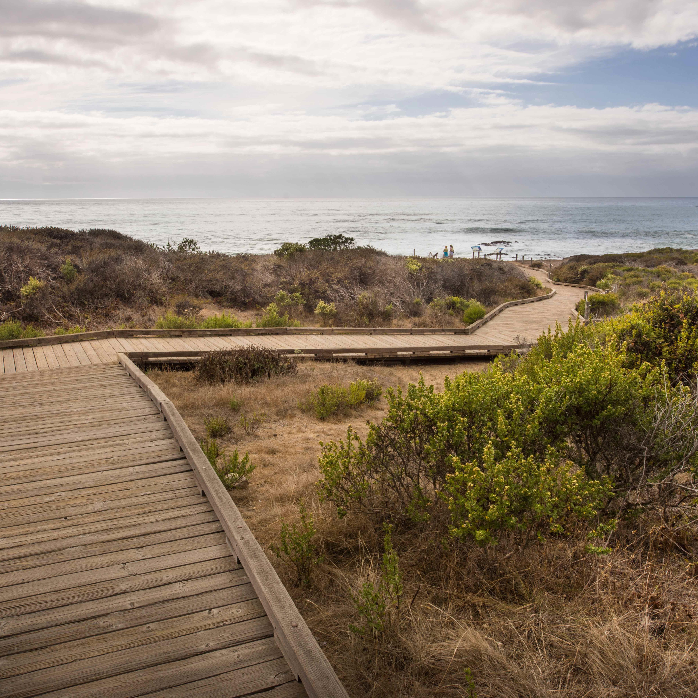 Moonstone Boardwalk