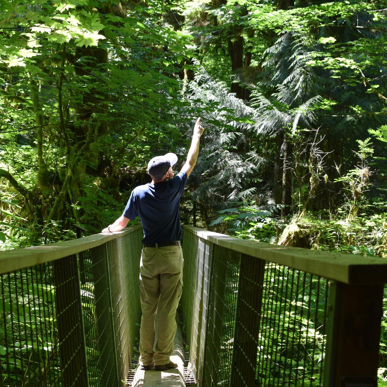 Morgan Scherer explaning the nature at Alderbrook Adventure