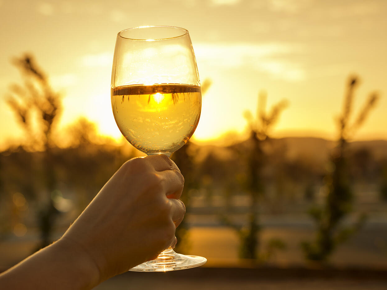 Person holding glass of wine with sunset