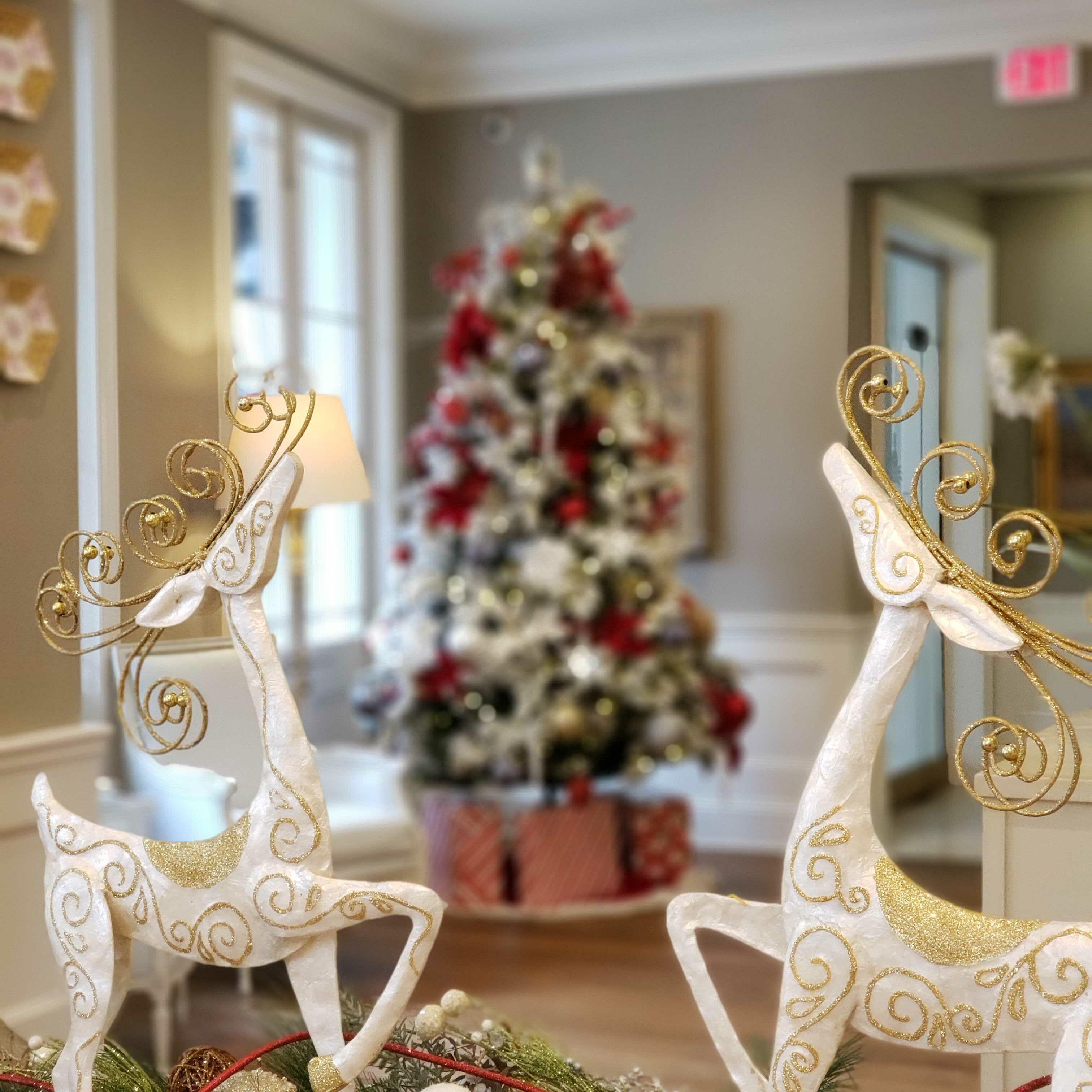 Christmas decorations at St. James Hotel