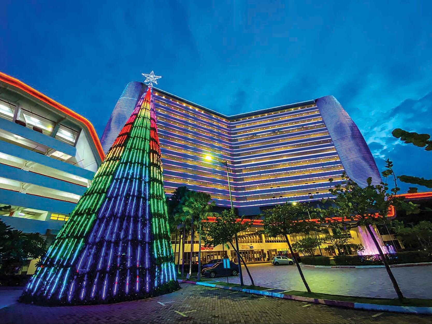 圣诞彩灯照亮马来西亚大红花
