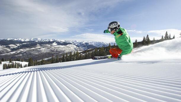 Skier on sunny day
