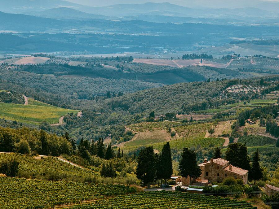 4 itinerari del vino in Italia