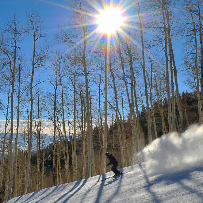 downhill skier on a sunny day