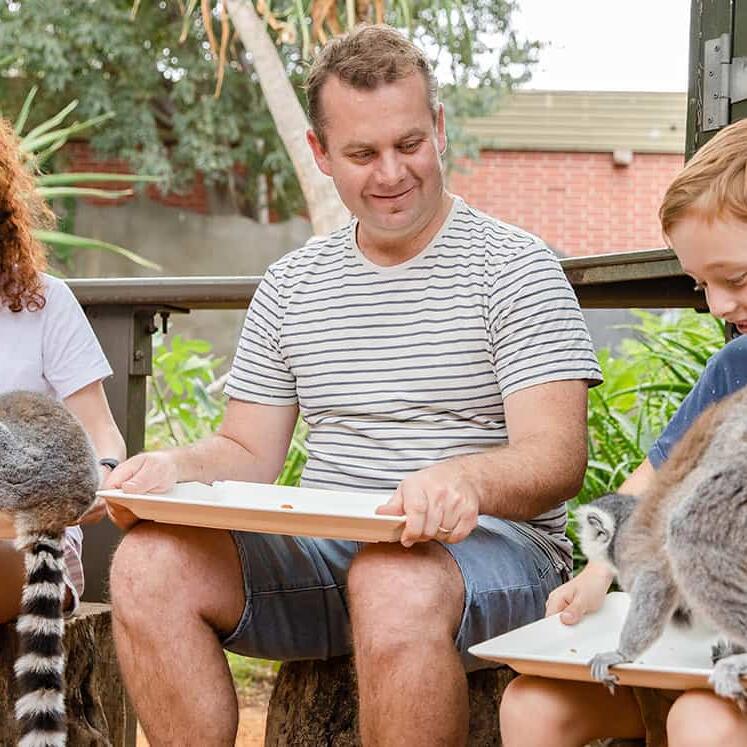 People at Lemur Encounter in Adelaide Zoo