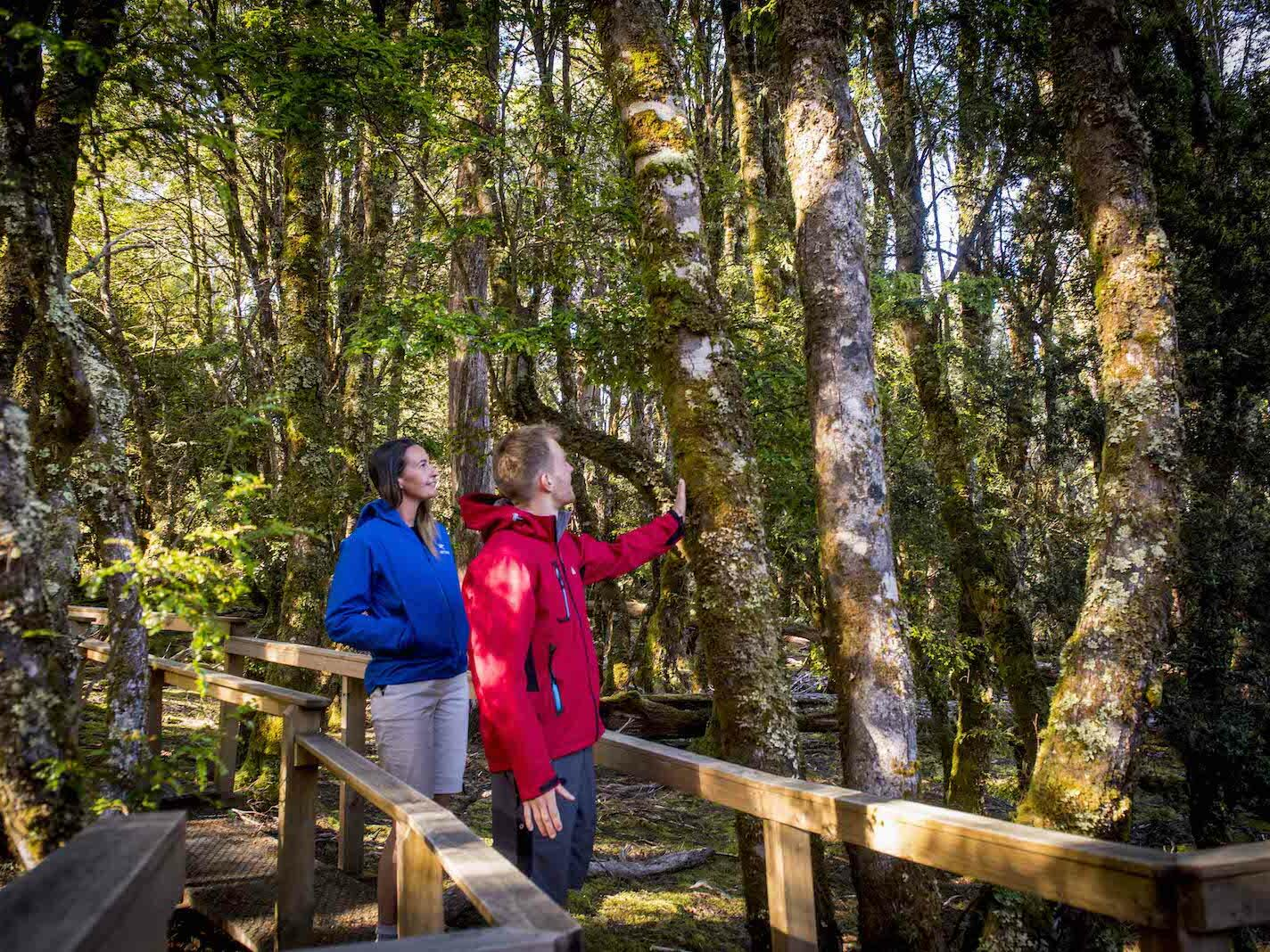 Couple walking on the wooden trails at Cradle Mountain Hotel