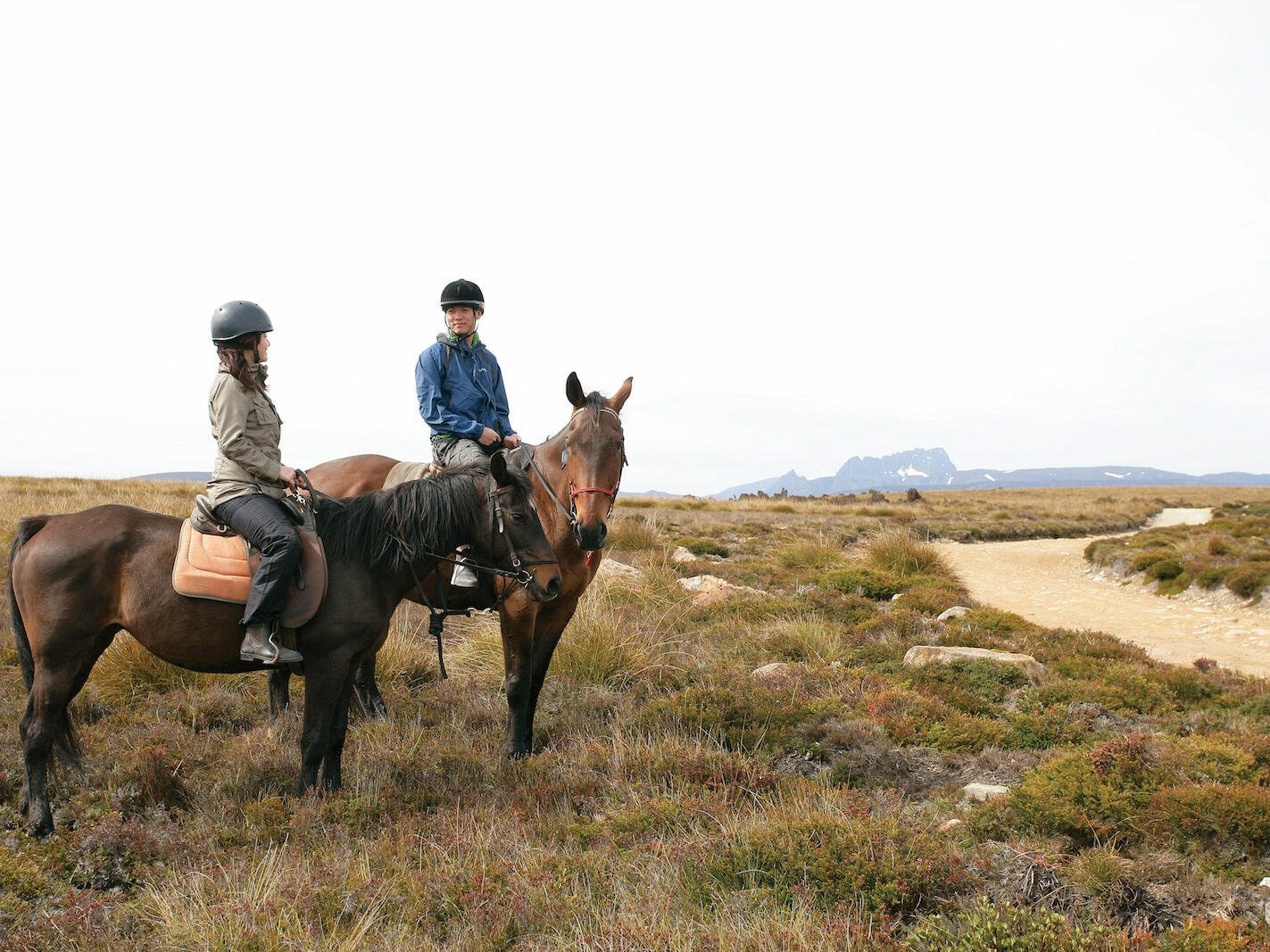 man and a woman riding horse near  Cradle Mountain Hotel