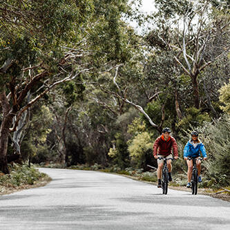 Couple riding bikes along the road at Freycinet Lodge