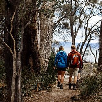 Couple hiking in the woods near Freycinet Lodgev