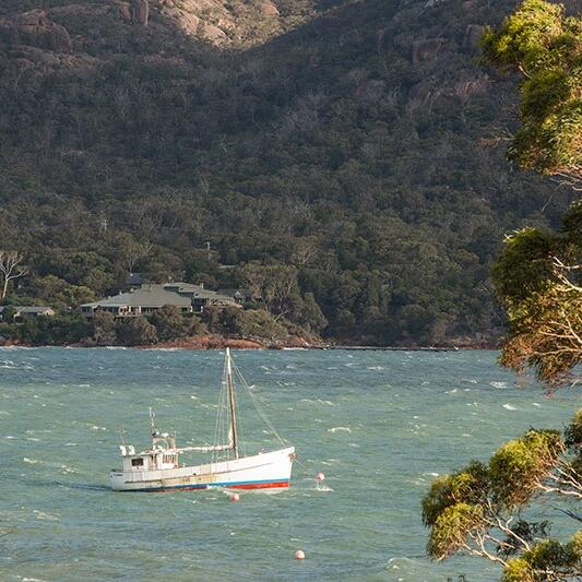 view of a Boat stopped at the coastline at Freycinet Lodge