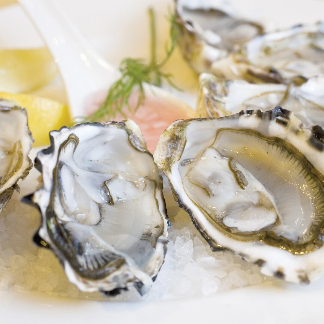 Dish of Oysters at the Richardson's Bistro Freycinet Lodge