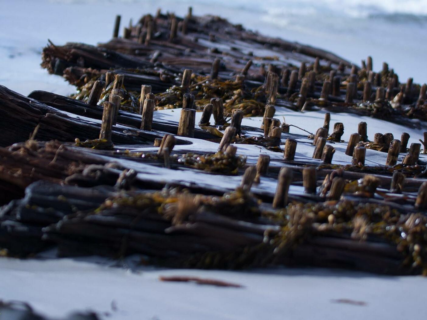 shipwreck  near the beach at Freycinet Lodge