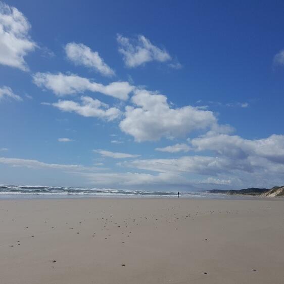 West Coast Beach near the Strahan Village