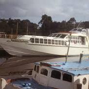 Boats and ships at the Harbor near the Gordon River Cruises