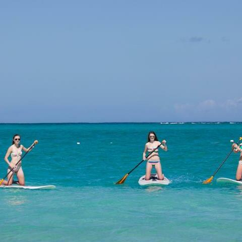 Ladies doing paddle boarding at the sea near Somerset Grace Bay