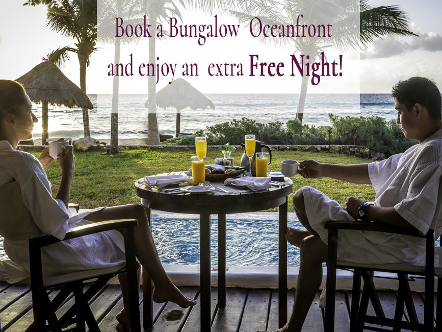 Book a Bungalo Oceanfront Min. 3 Nights and enjoy an Free Night