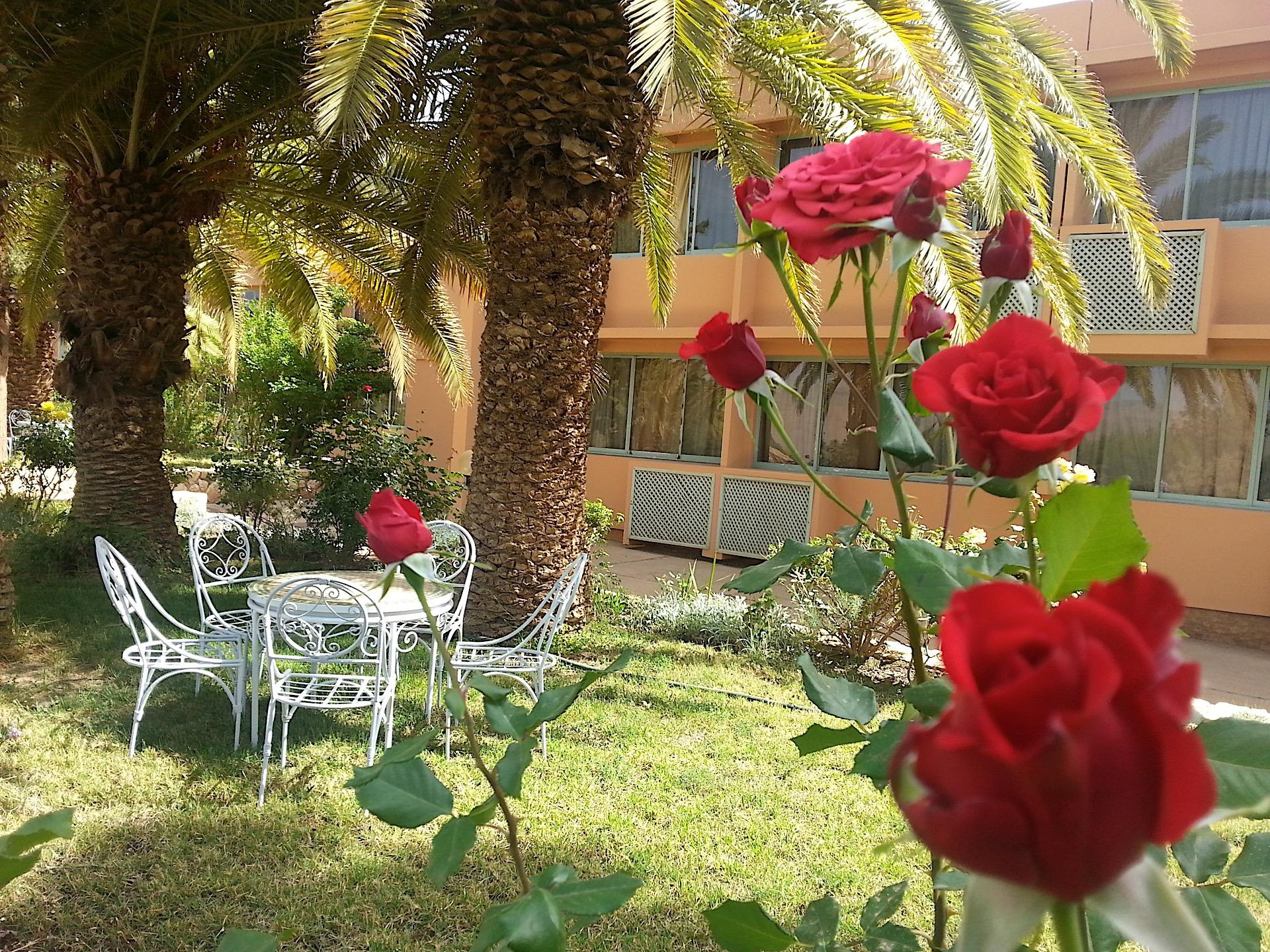 Garden at Kenzi Hotels Group