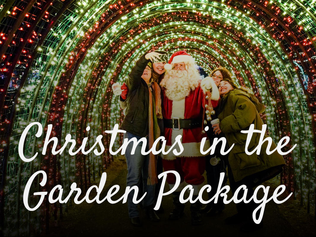 Christmas in the garden package