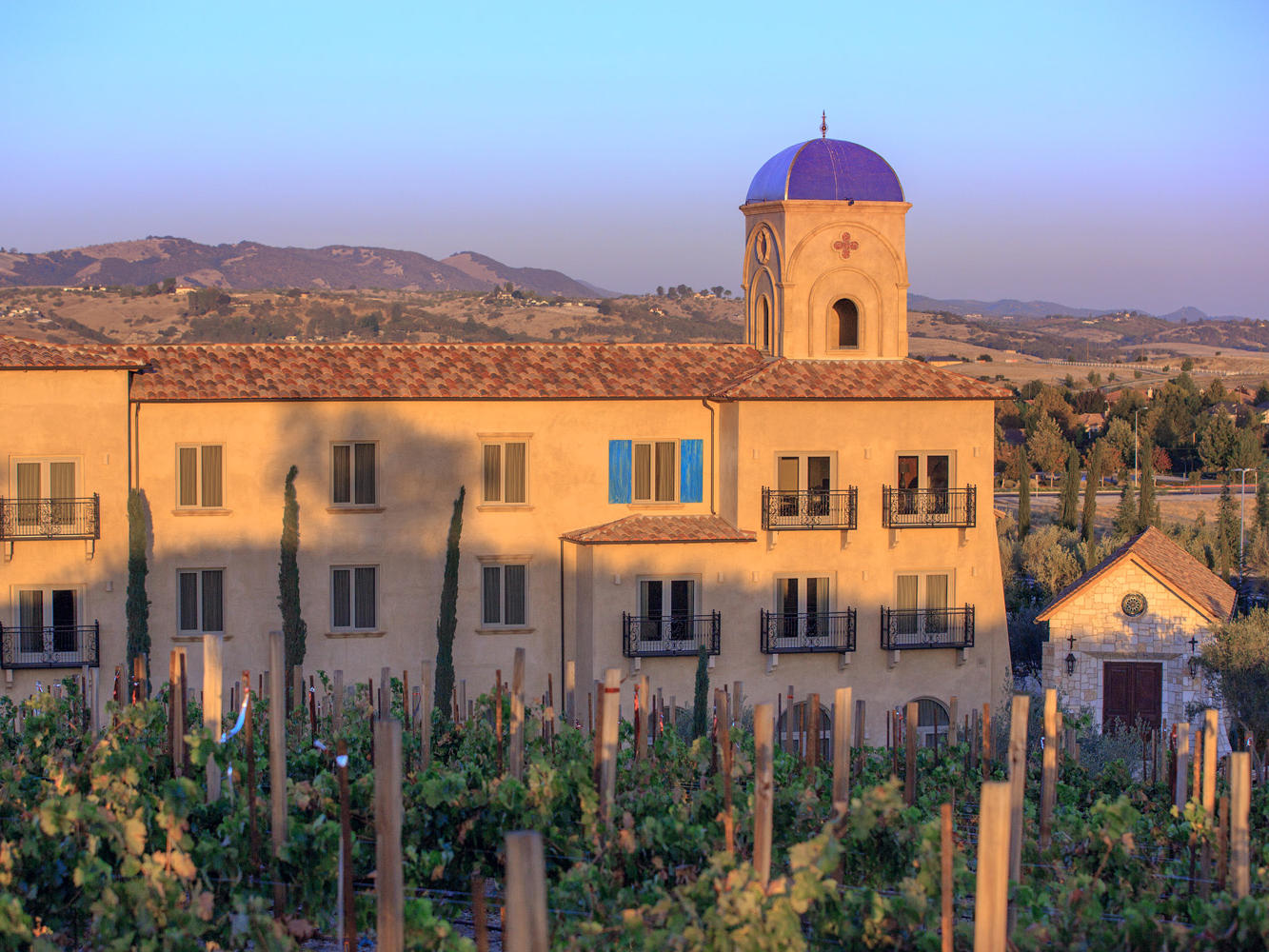 A view of the exterior of the resort looking through the vineyard at sunset.