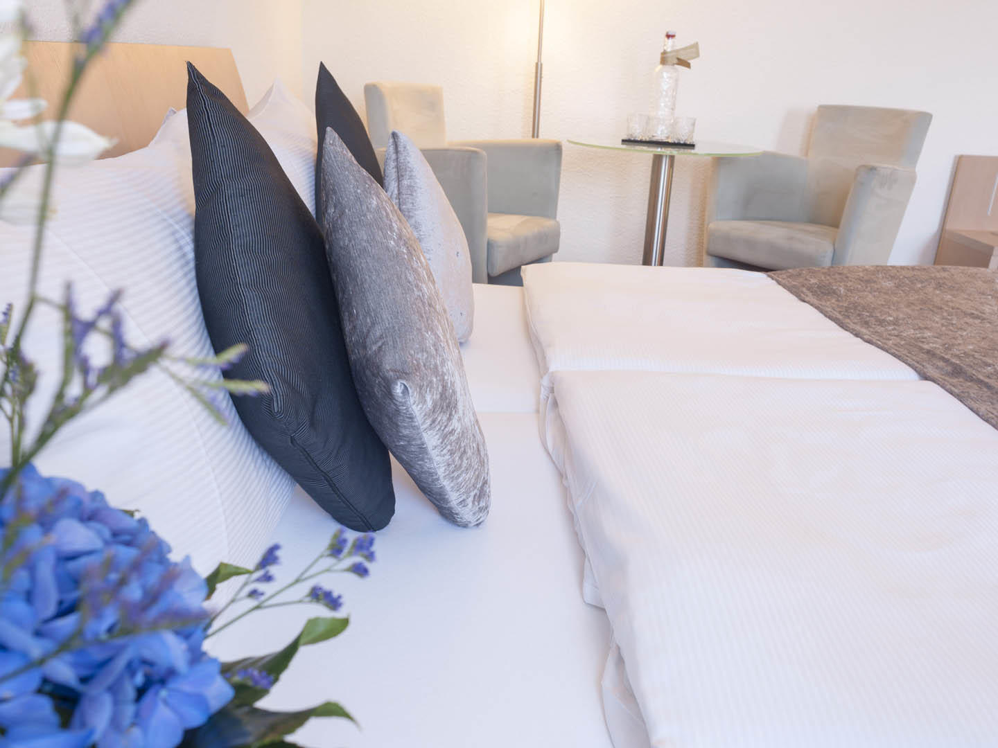 Special Offer at Hotel Krone Unterstrass in Zurich