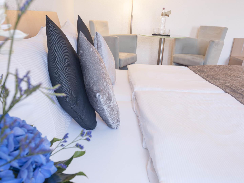 Special Offer at Hotel Krone Unterstrass in Zurich