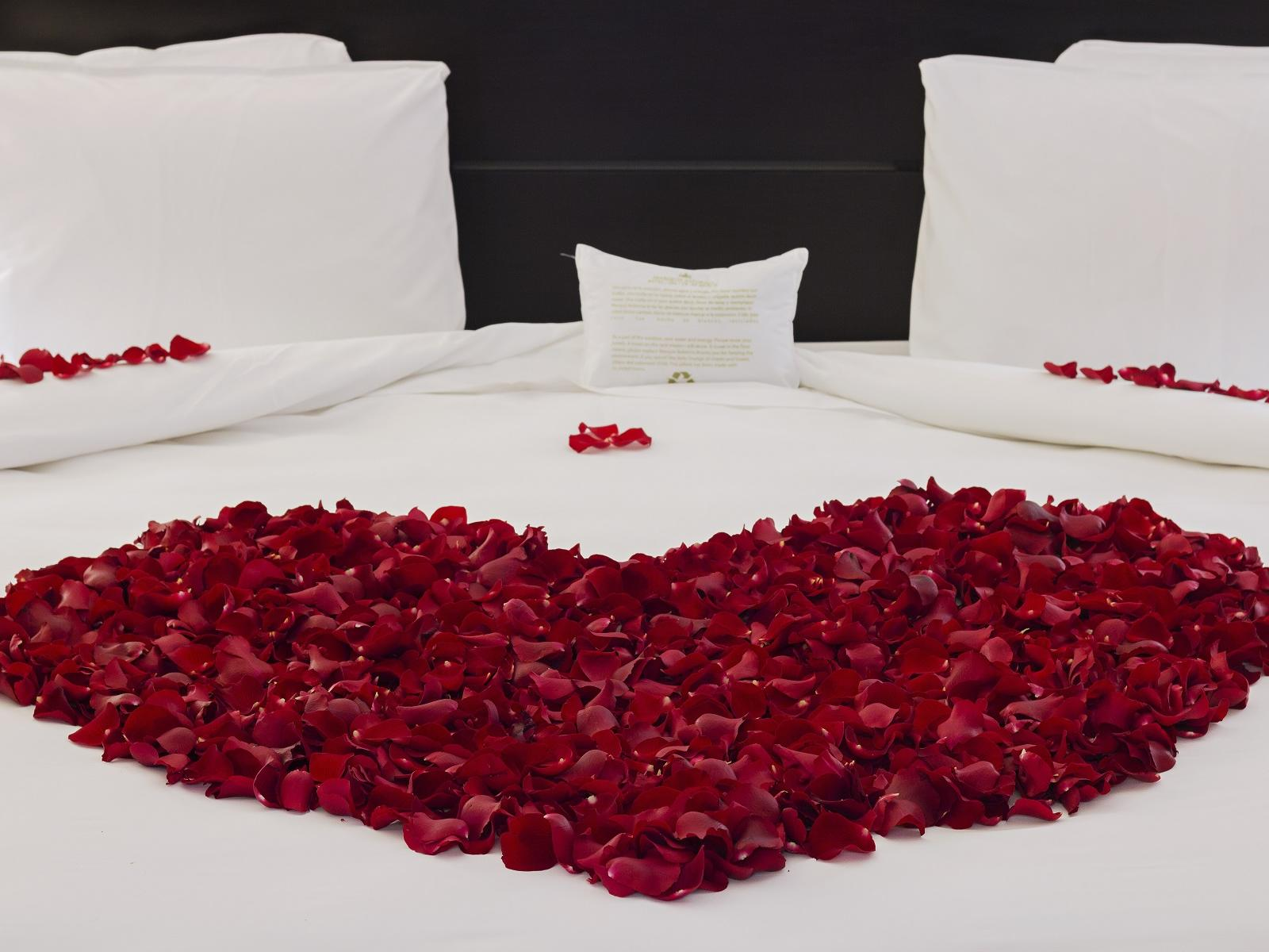Honeymoon Bed at Marquis Reforma